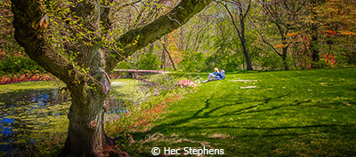 Hec_Stephens_Sunday In The Park_First Place_EOY Color B_20180512